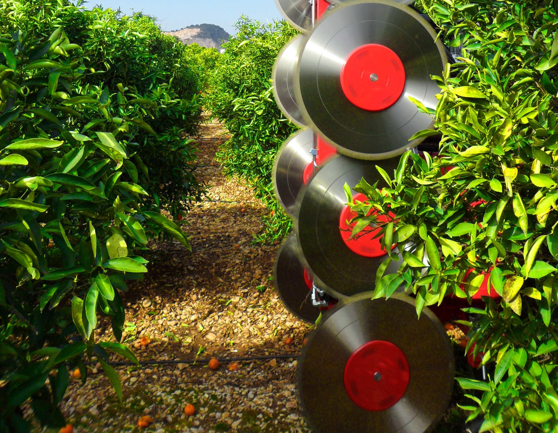 ID-David. Fabricantes de maquinaria agrícola. Eficiencia y tecnología para sus cultivos