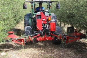 Olivar en seto - PFO Podadora de faldas de olivo