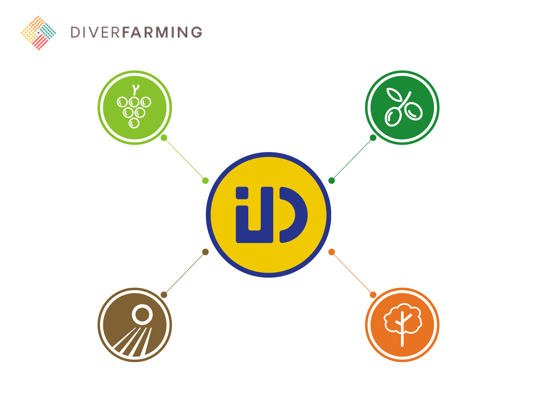 ID-David presenta el prototipo de maquinaria para la diversificación de cultivos como socio de Diverfarming